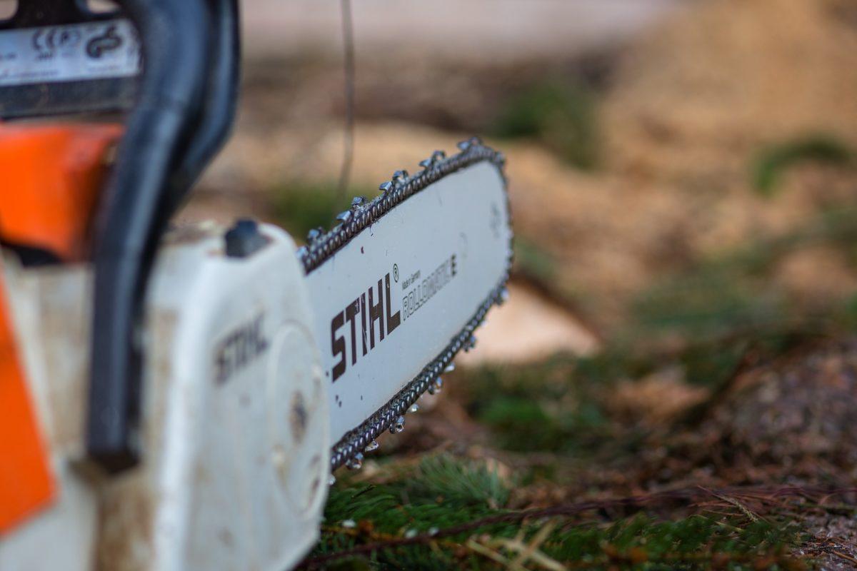 Erstatning etter ulovlig felling av trær